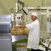 Przemieszczanie sera w opakowaniu lub bez - Manipulator Dalmec - Manipulatory DALMEC